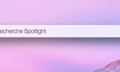 1-fenetre-spotlight.jpg